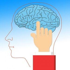 brain-628736_640